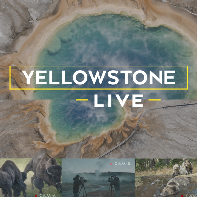 Yellowstone Live relies on veterans of Super Bowl halftime