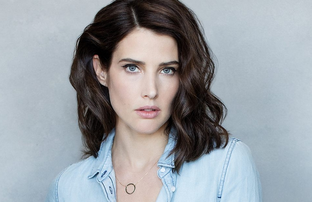 Cobie Smulders stars in <i>Stumptown</i>