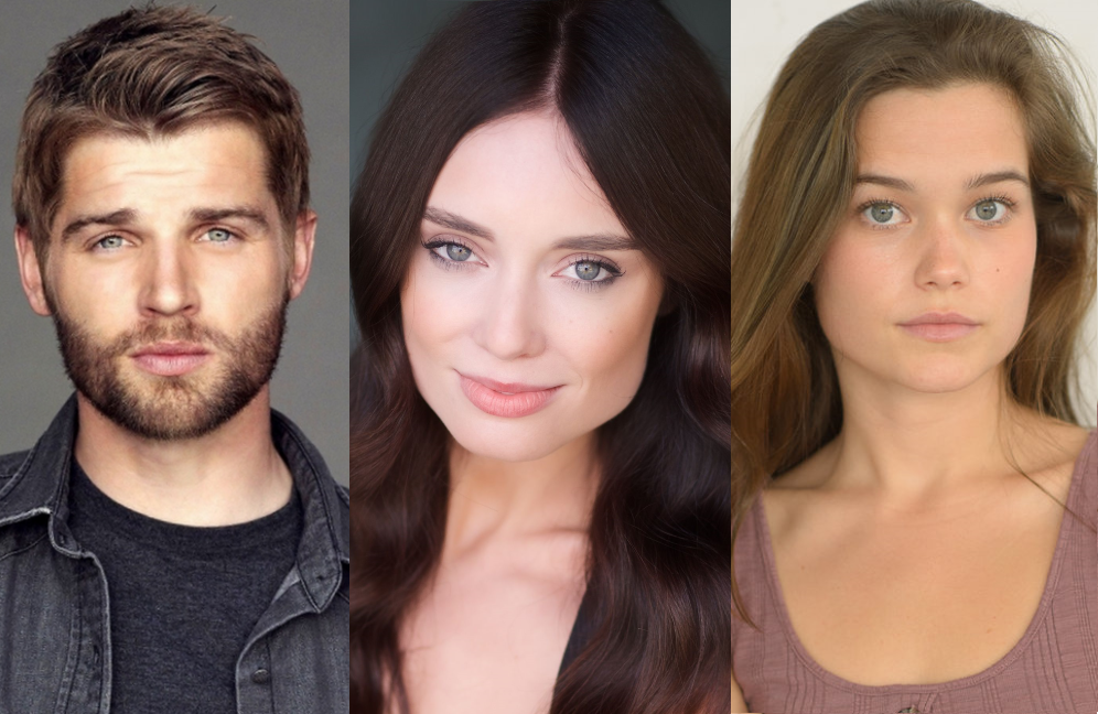 Mike Vogel, Mallory Jansen and Sarah Catherine Hook star in ABC's <i>Triangle</i>.