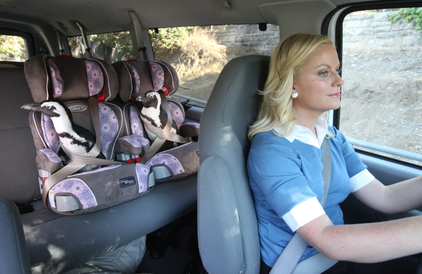 """It's Flipper & Eve, not Flipper & Steve"" Amy Poehler in Park and Recreation (NBC)"