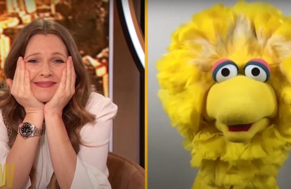 Big Bird on The Drew Barrymore Show