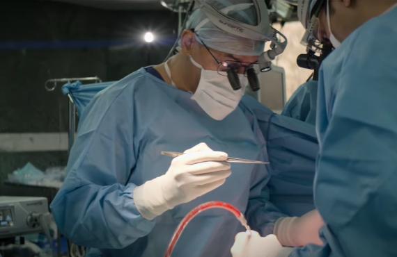 The Surgeon's Cut (Netflix)