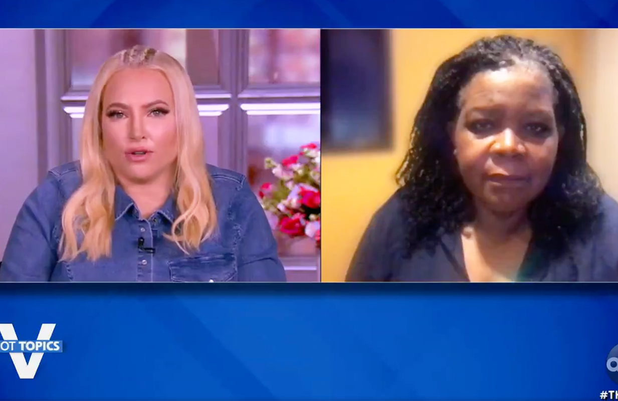 Meghan McCain and Pulitzer Prize winner Annette Gordon-Reed on The View. (Photo: ABC)