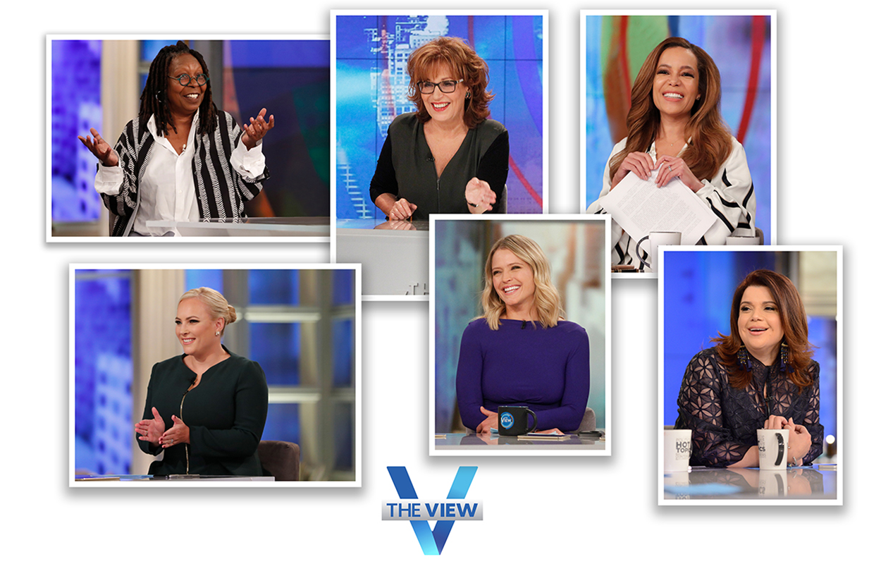 The View's Season 24 co-hosts, clockwise from top left: Whoopi Goldberg, Joy Behar, Sunny Hostin, Ana Navarro, Sara Haines, and Meghan McCain. (Photo: ABC)