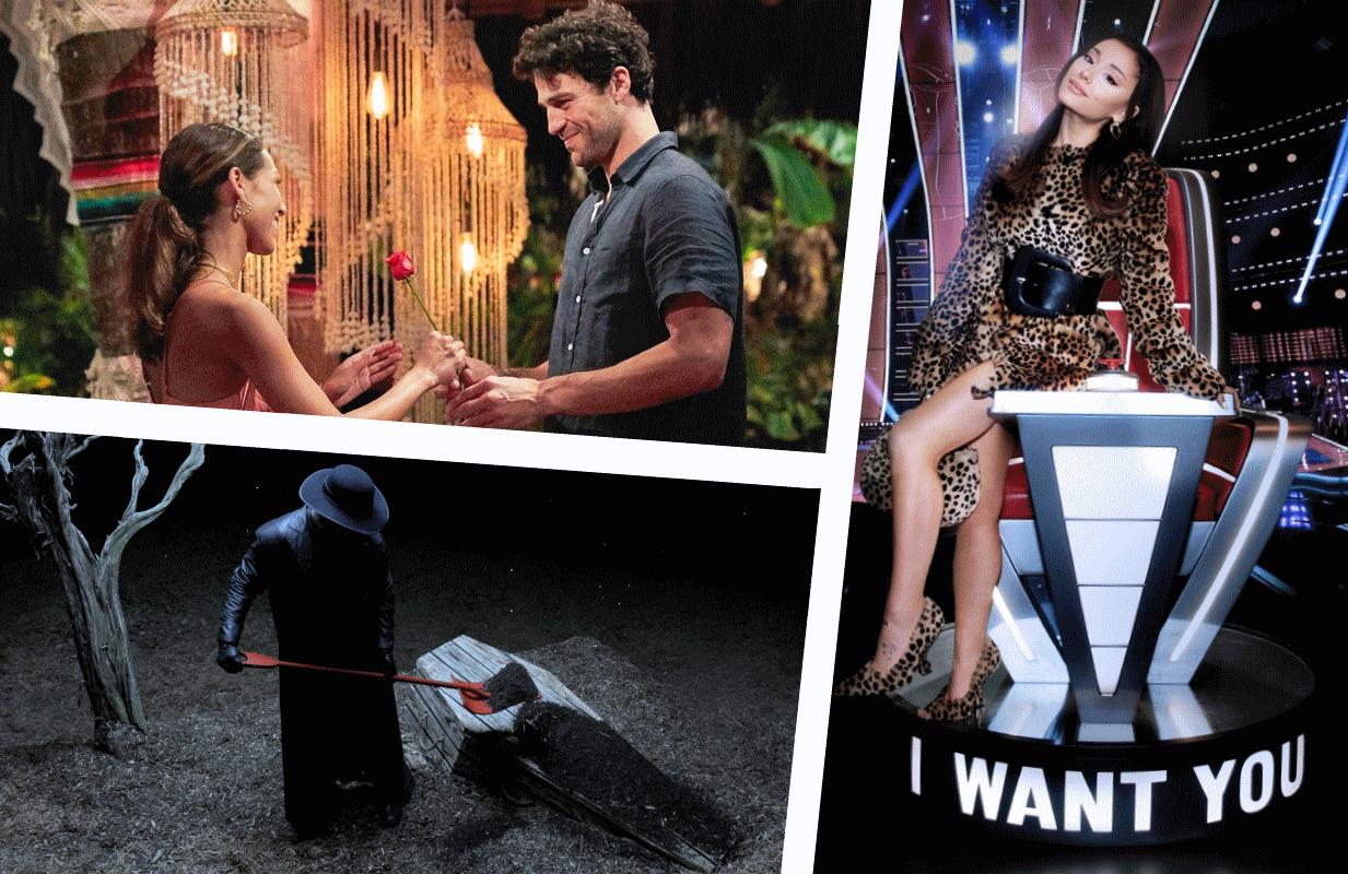 Photos: ABC, Netflix, NBC